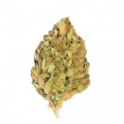 Blue Cheese 9,7% - Fleur de...