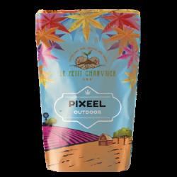 Pixeel 7% - Fleur de Chanvre